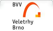 logo-bvv.png